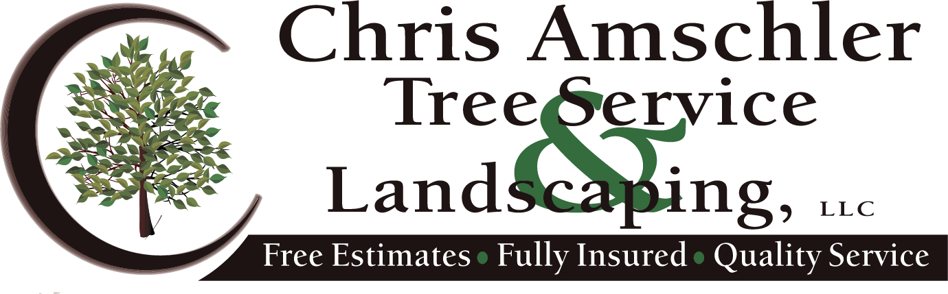 Chris Amschler Tree Service and Landscaping
